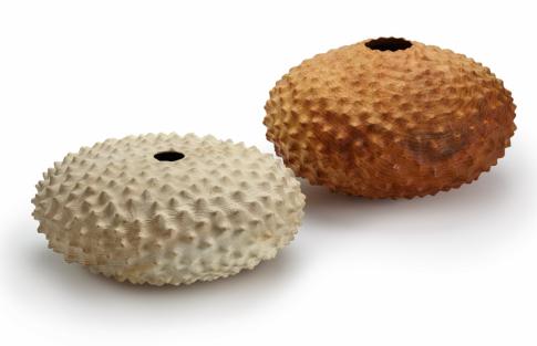 Eleanor Lakelin: Holzobjekte, die an Seeigel erinnern - sie wird eine Serie von Objekten vorstellen, deren Formen und Oberflächen von der Landschaft in Forde Abbey inspiriert sind