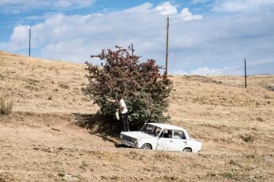 Erol Gurian - Krokodile am Ararat: Ein Mann pflückt wilde Kirschen. Armenien, 2015