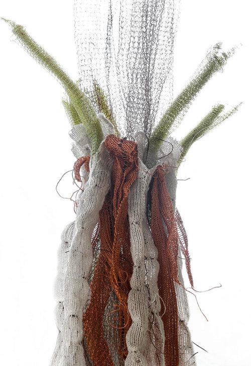 diana-brennan-ranunculus-repens-roots-5-detail